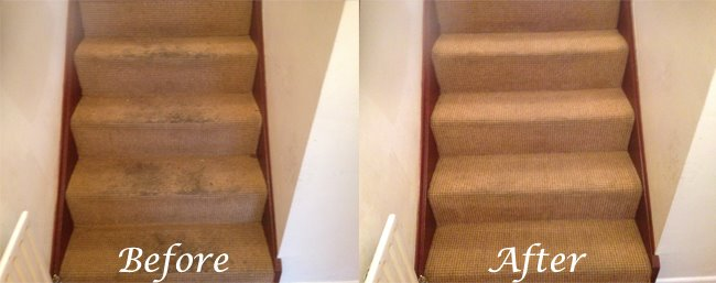 carpet cleaners tandragee